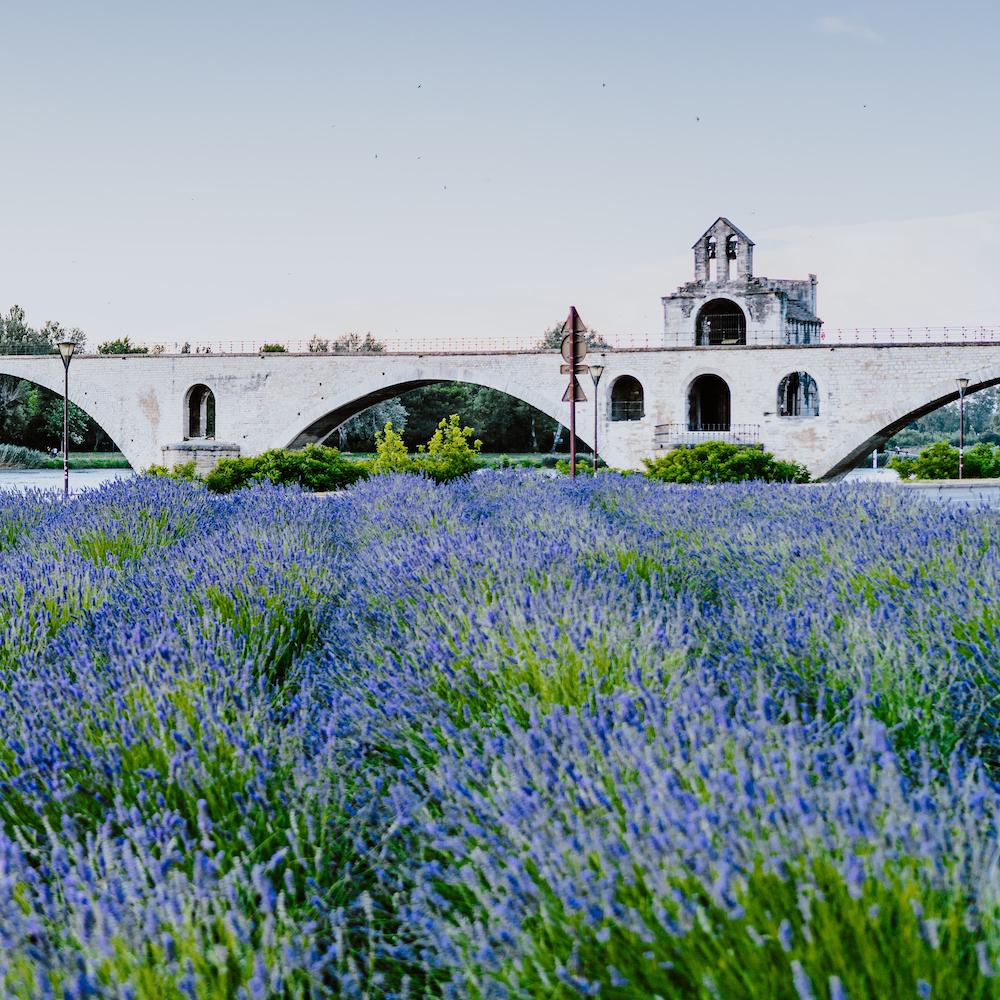 image of Avignon