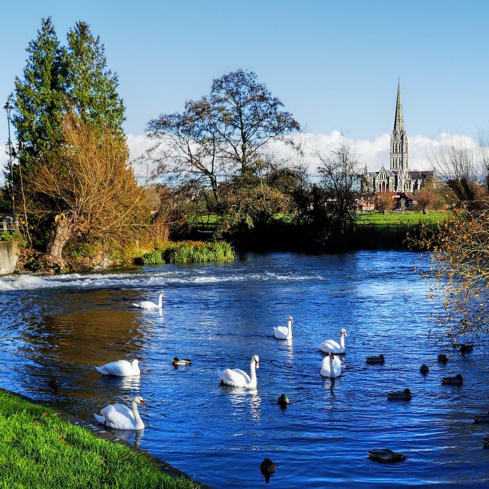image of Salisbury