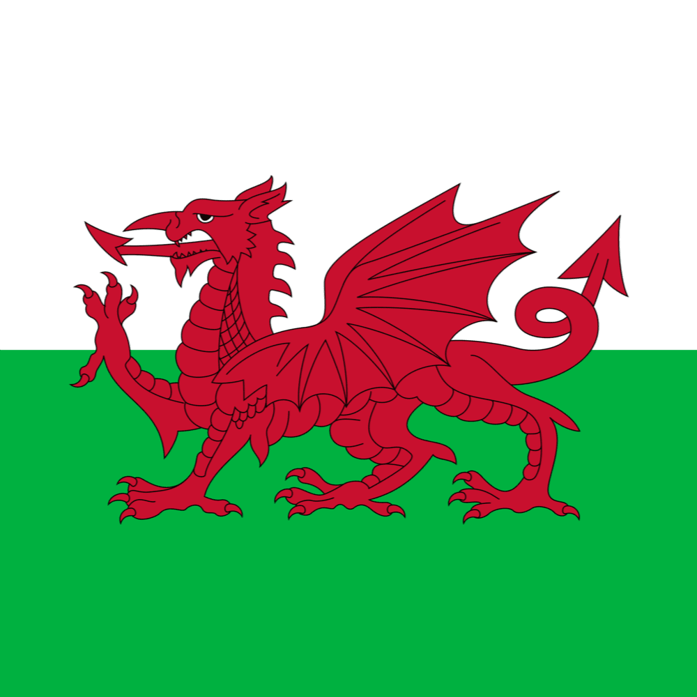 Wales's flag