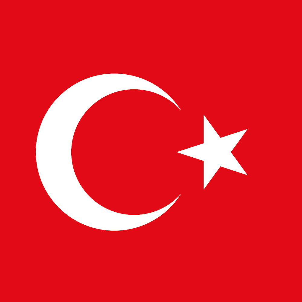 Istanbul's flag