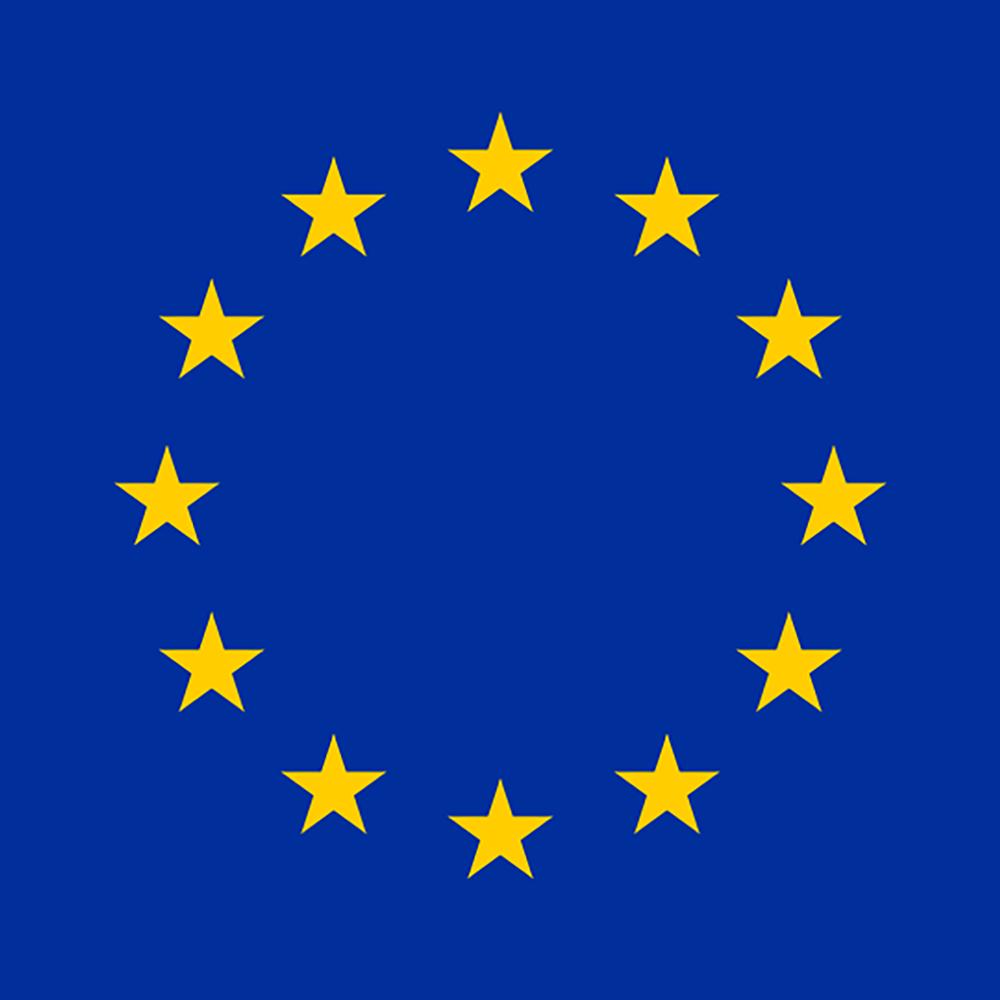 Tirana's flag