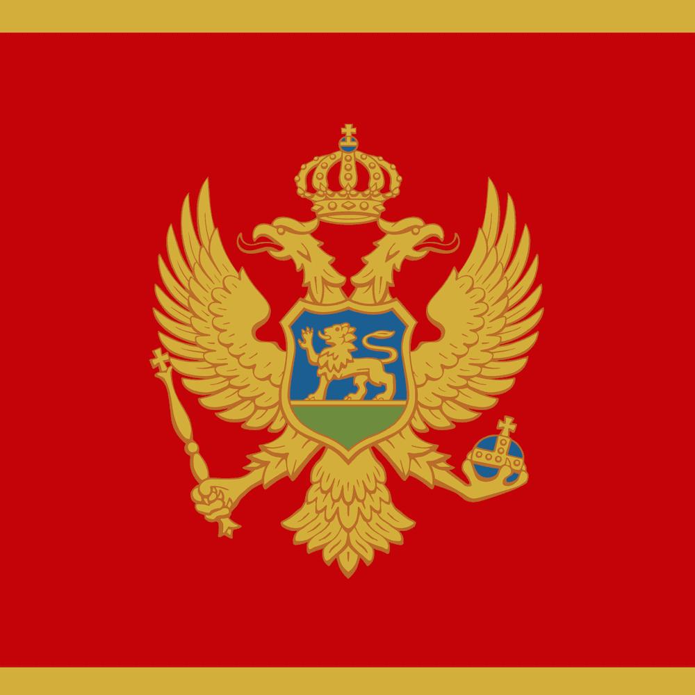 Montenegro's flag